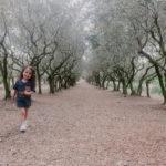 photo de famille oliveraie provence